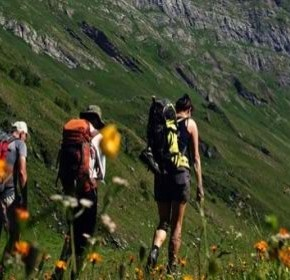 Health adventurer: Late muscle pain or stiffness