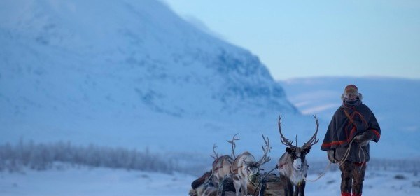 Swedish LAPLAND  --  Snowshoe crossing beyond the Arctic Circle