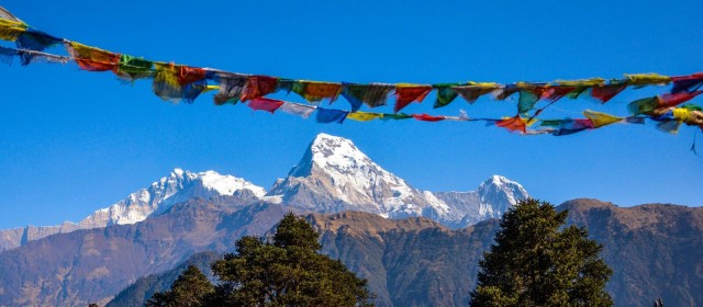 Untamed mountains: in the domain of Annapurna